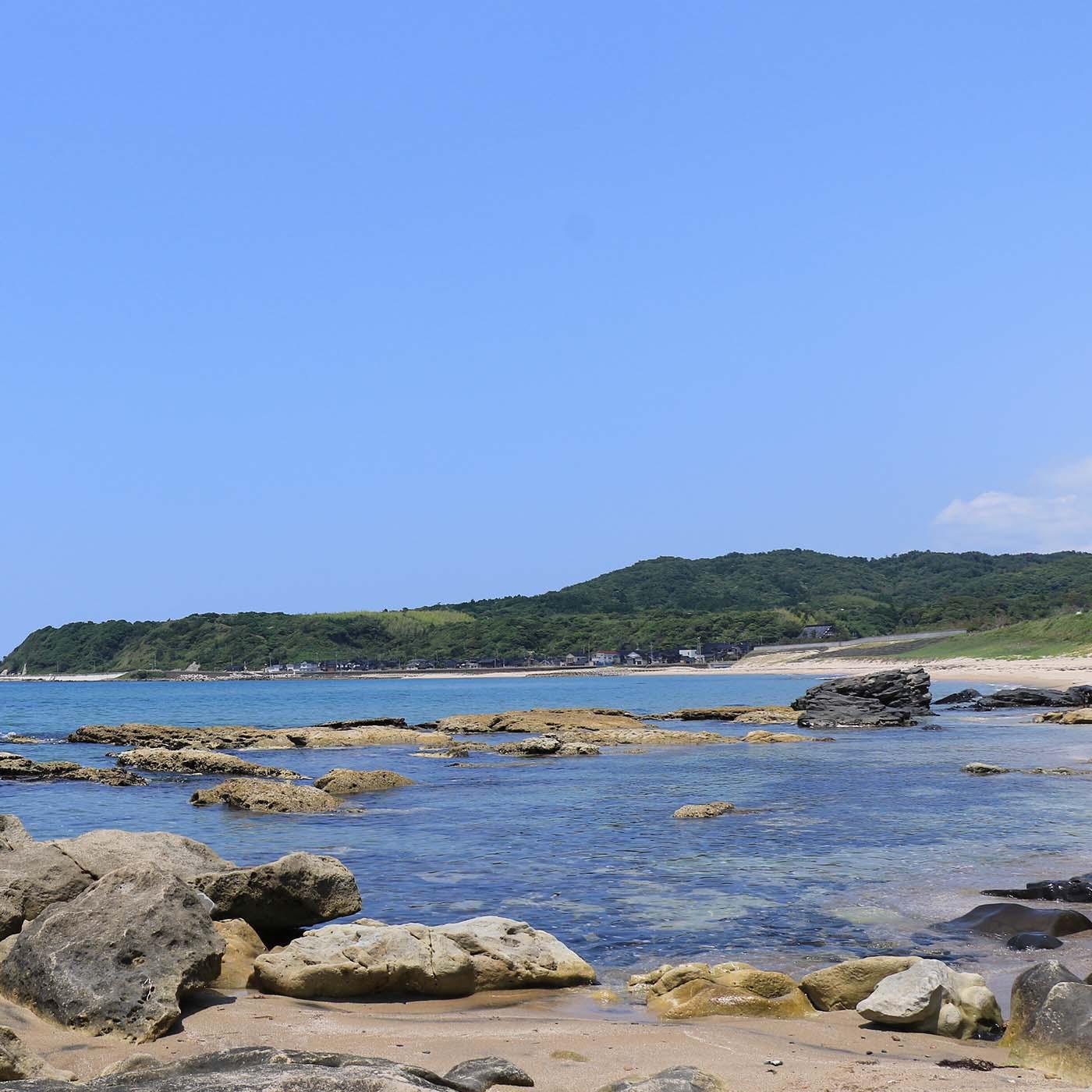 浜を見極める